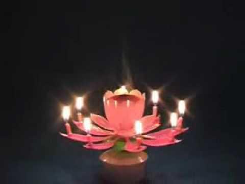 Musical Lotus Birthday Candle Partysparx