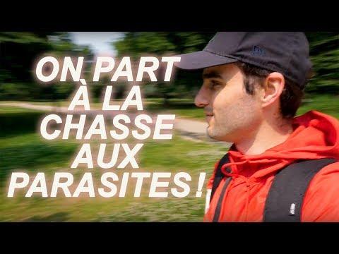 ON PART À LA CHASSE AUX PARASITES !