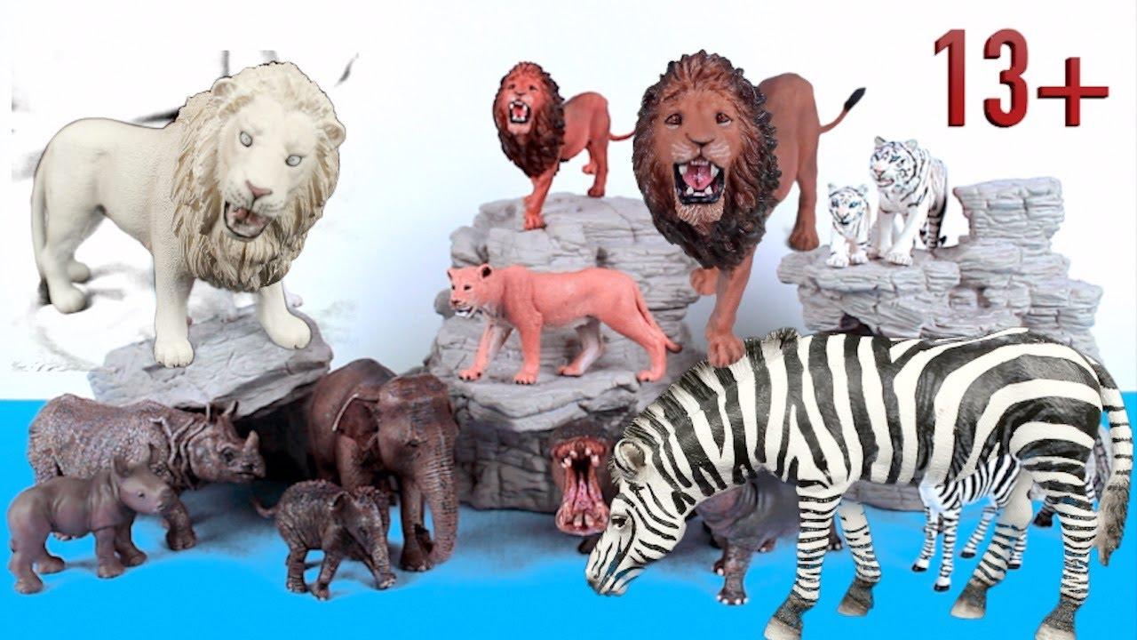 Big Cat Week - Zoo Animals Lion, Tiger, Hippo, Rhino, Zebra, Elephant 13+