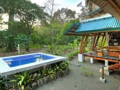TROPICAL HOUSE DESIGNS MAKE YOU LOVE GREEN ARCHITECTURE DESIGN - Tropical house design concept