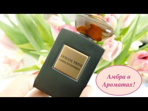 Амбровые ароматы   Нота амбры в аромате
