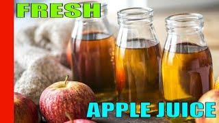 How to make fresh Apple Juice || Homemade Apple Juice || Apple Juice ||  Fresh Apple Juice Recipe
