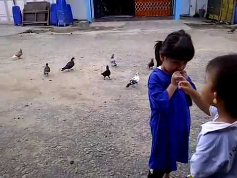 Darren n Cousins Ngasi Makan Burung di Singkawang