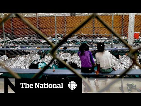 CBC News: The National: Little outrage from Trump voters over family separation