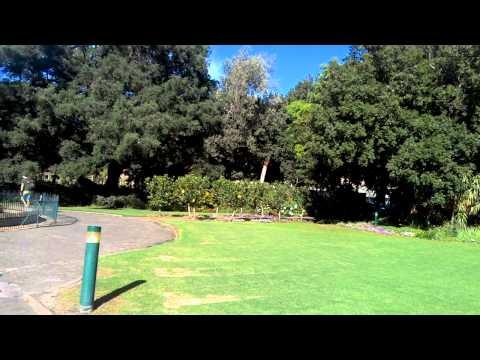 In company's Garden Cape Town