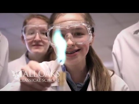Why I Love Tall Oaks Classical School