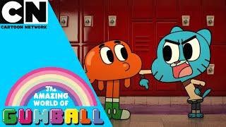 Amazing World of Gumball | Best of Gumball | Cartoon Network