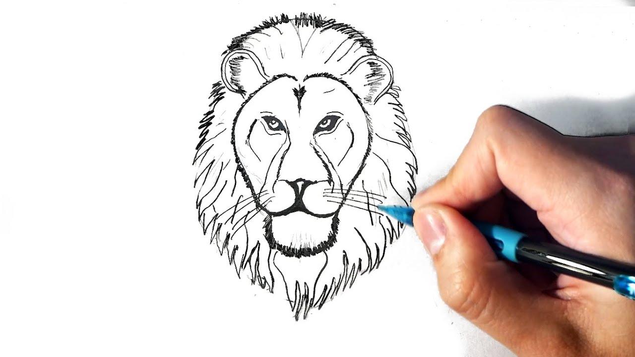 Cómo dibujar un león paso a paso fácil - Dibujos de leones