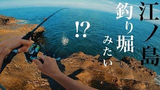 江ノ島で釣りしたらヤバすぎた! 【ショアジギング】