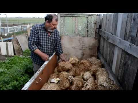 брикеты для выращивания грибов