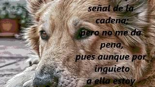 El lobo y el perro de José María Samaniego nos habla de un bien tra...