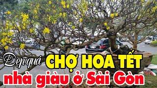 Đẹp quá chợ Hoa Tết Phú Mỹ Hưng quận 7 chợ hoa cho nhà giàu ở Sài Gòn