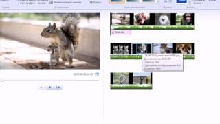 Красивое слайдшоу в 4 хода в программе Киностудия Windows Live