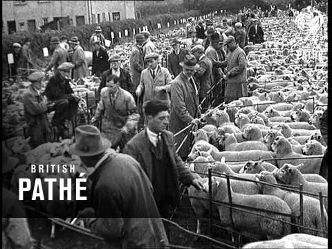 Kington Sheep Market (1937)
