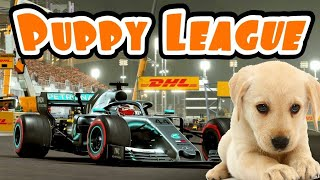 Cool F1 Puppy League