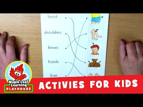 Body Parts Activity for Kids   Maple Leaf Learning Playhouse