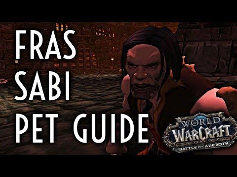 Wow Guide Fras Sabi Stratholme Pet Battle Dungeon Youtube