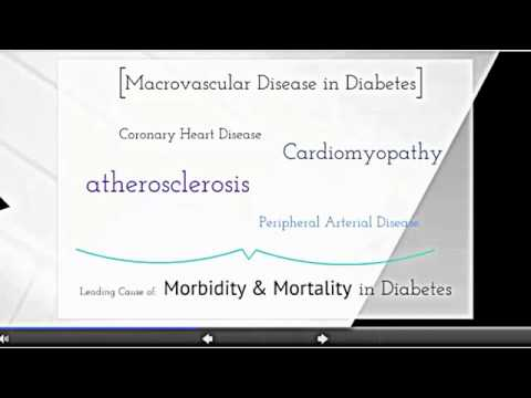 Advanced Glycation Endproducts AGEs and the Pathophysiology of Angiopathies in T2DM   YouTube