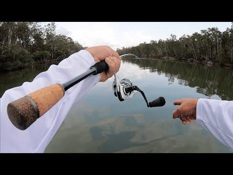 FISHING NOOSA RIVER | Mangrove Jack Explore.