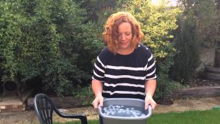 Kate's Ice Bucket Challenge in aid of #MND Association UK.