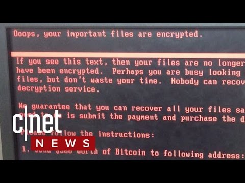 Nasty Petya Ransomware Spreading Fast (CNET News)