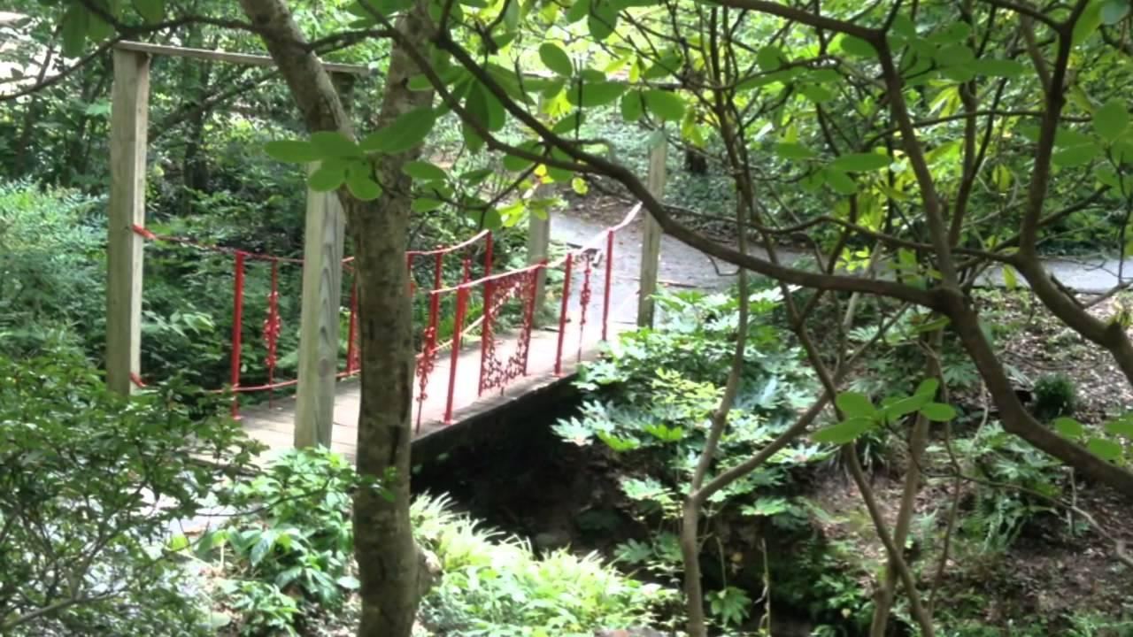 Visit Unc Charlotte Botanical Gardens Youtube