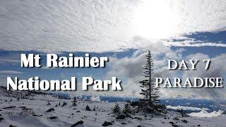 Mt Rainier Trip Day 7 - Paradise