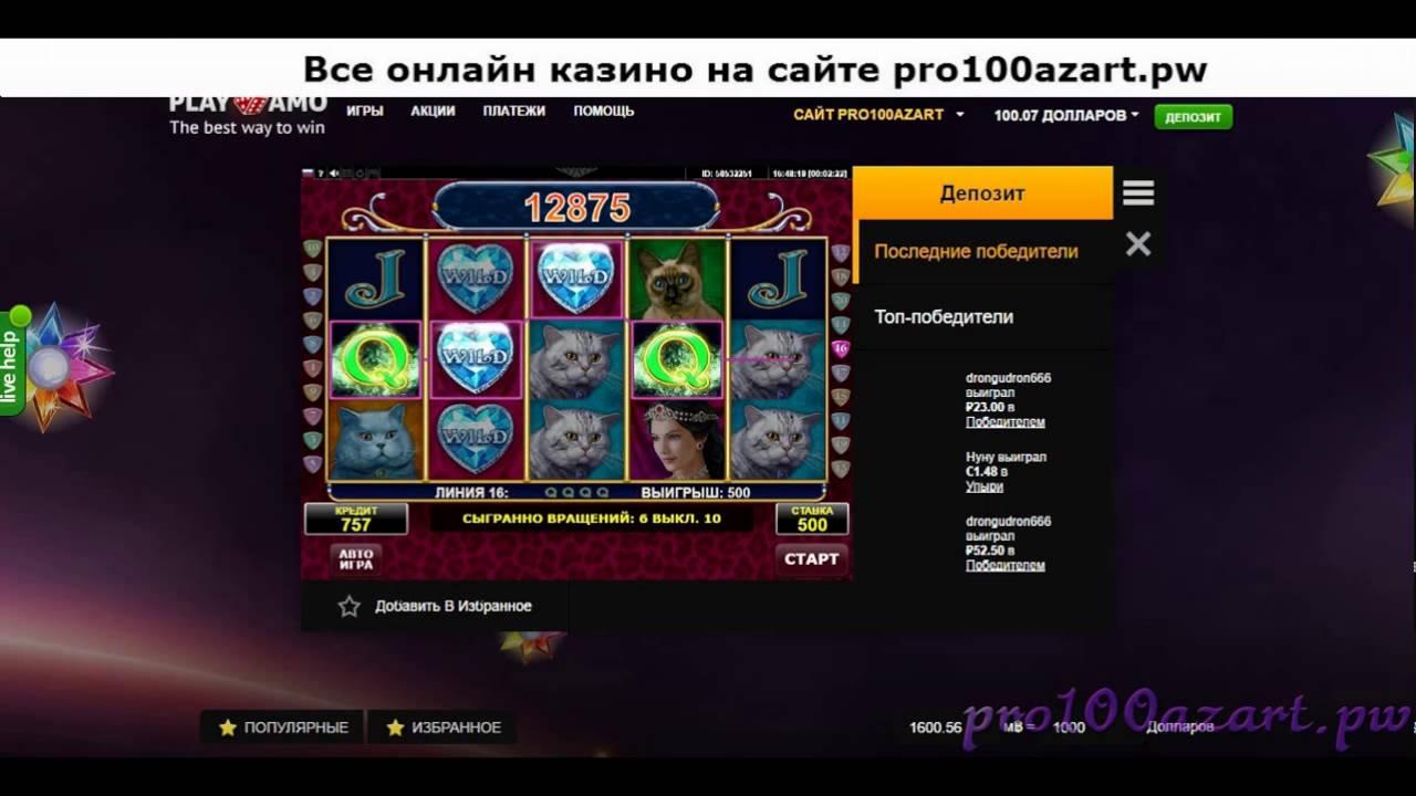 Бонус игра в слоте Diamond Cats играю в казино PlayAmo casino