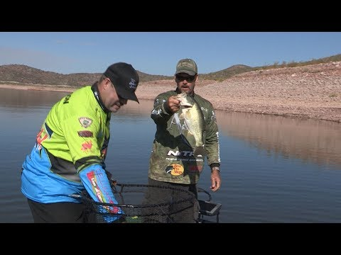 Fishing with Johnny Johnson - Crankbaits with Danny Hallock