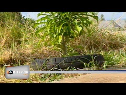 Campanha recolhe pneus em Presidente Prudente