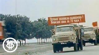 Хлеб легким не бывает. Документальный фильм о методе уборки урожая в Ставропольском крае (1979)