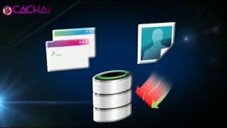 Cachaii web hosting control panel
