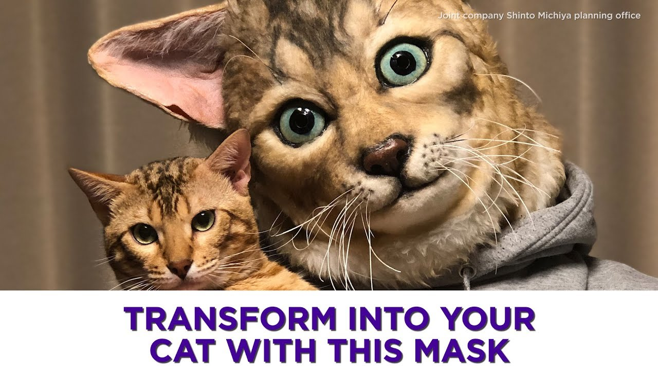 Transform your cat with this ultra-realistic mask