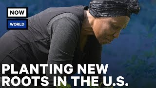 Planting New Roots in the U.S. | NowThis World