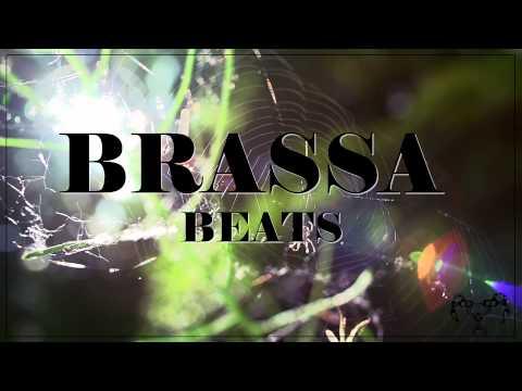 Brassa Beats - The Sound
