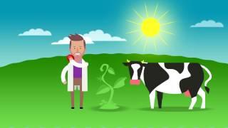 Być jak Ignacy – Energia. Film edukacyjny dla dzieci.