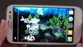 My 3D Fish II  -  maxelus.net Thumbnail