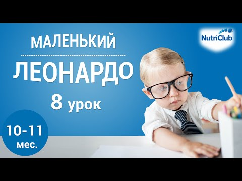 Интеллектуальное развитие ребенка 10-11 месяцев по методике Маленький Леонардо. Урок 8