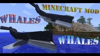MineCraft Whales, Sea Turtles, Big Fish!
