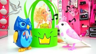 Видео для девочек. Делаем кормушку для птиц с Барби и Машей