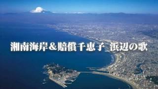 湘南海岸とは、湘南地方のうち神奈川県鎌倉市の七里ヶ浜から藤沢市の江...