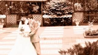 Фотограф на свадьбу в Курске