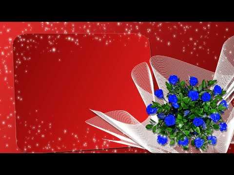 ЦВЕТЫ: ЧАЙНАЯ РОЗА. Garden Roses flower