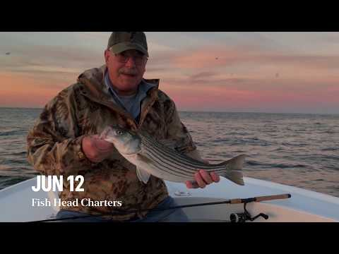 Striped Bass Dawn Patrol Fishing LBI NJ