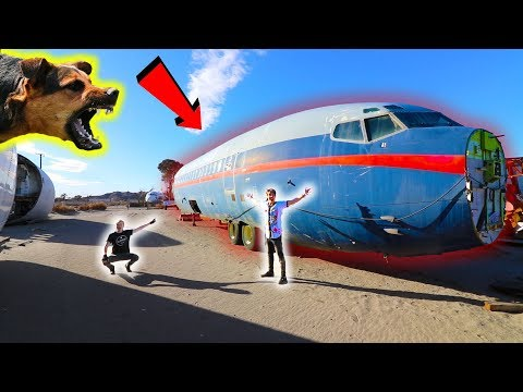 (Guard Dogs!) EXPLORING AIRPLANE GRAVEYARD