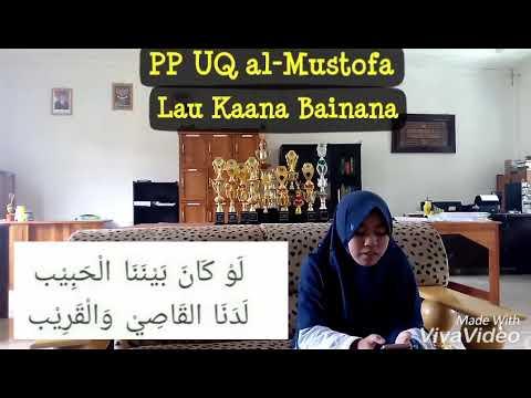 Lau Kaana Bainana #sholawat #De Alvi part 1#PP UQ al-Mustofa #120318