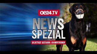 News-Spezial: Blutige Gefahr – Kampfhund