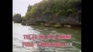 WHIP IT BY DEVO (VIDEOKE COVER)