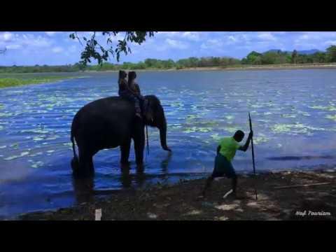 Travel SRI LANKA with NAF Tourism 2K18
