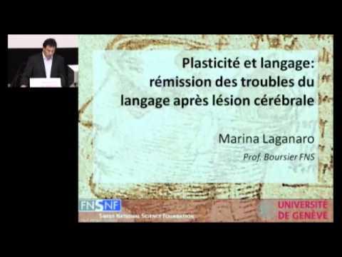 Le langage, théâtre de la souplesse cérébrale